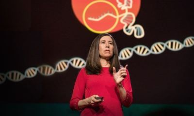 Ellen Jorgensen palestra sobre a CRISPR no Ted Talks