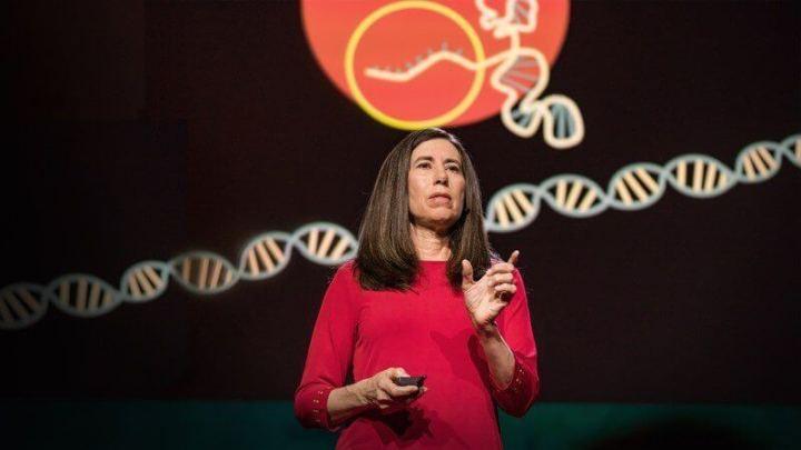 TED Talks CRISPR 720x405 - Ted Talks: O que você precisa saber sobre o CRISPR