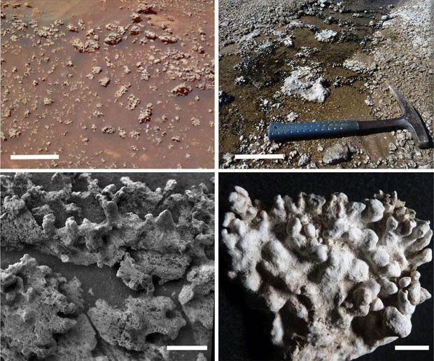 comparativo de vida em Marte e Chile - Cientistas podem ter encontrado evidências de vida em Marte