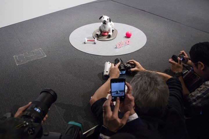 aibo 2 720x480 - Nova versão do cãozinho robô da Sony, o Aibo, é anunciada