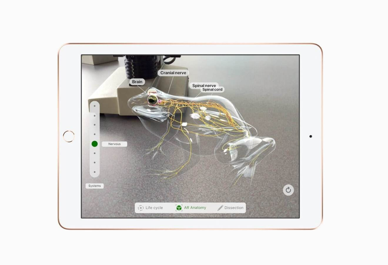 Apple: mais barato, novo iPad chega com foco em estudantes