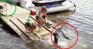 Broma ciego se cae al agua