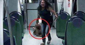 Broma zombie en el metro de Brasil