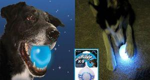Pelota luminosa para perros