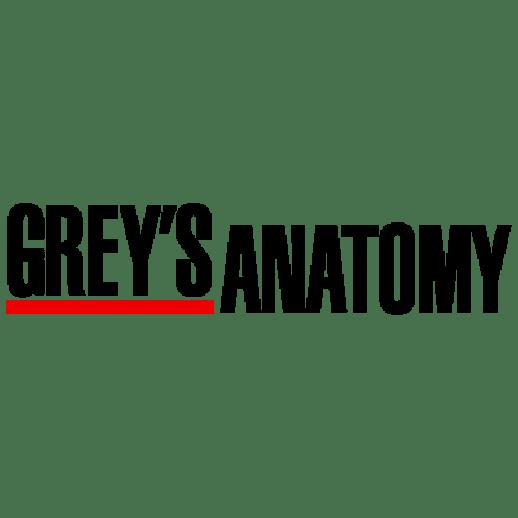 Grey's Anatomy: Recensione 17×10 – Respira