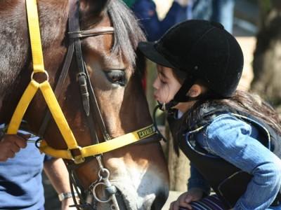 Equitação Pré-esportiva - Equoterapia SHPA