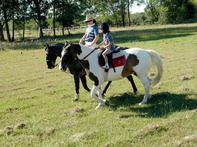 Psicoterapia a Cavalo - Equoterapia SHPA