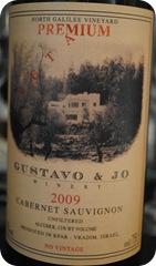 Gustavo & Jo Winery 007