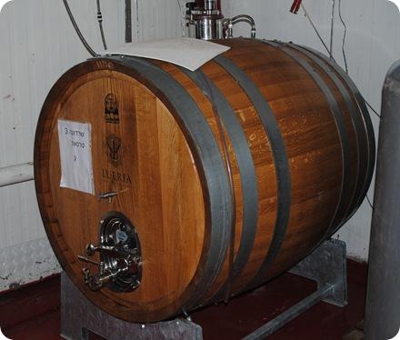Leuria Winery 008