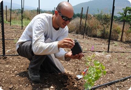 cs planting 051