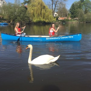 Book Half Day Canoe Hire from Quarry Park