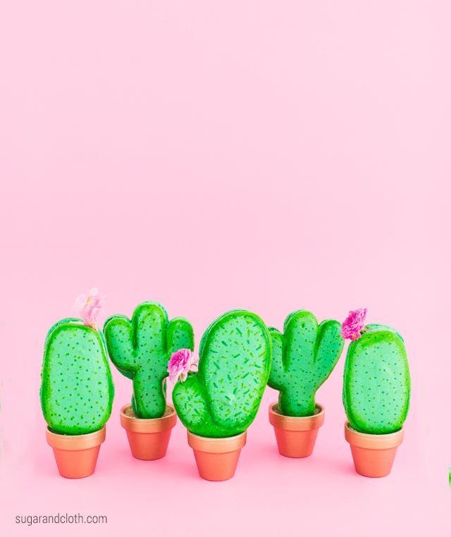 10 Cactus Crafts 3