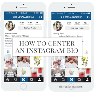 How to Center Your Instagram Bio – Blog Better