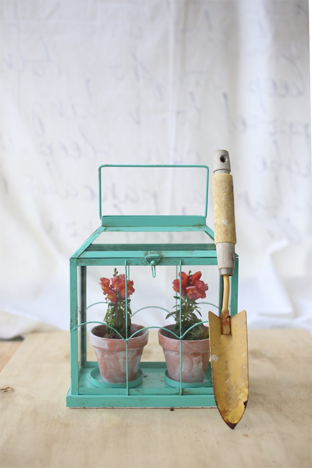 Easy DIY Flower Terrarium - Make a Miniature Greenhouse Made from a Candle Holder