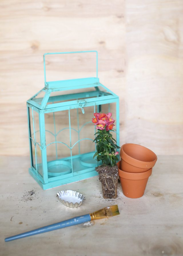 Easy DIY Flower Terrarium - Supplies