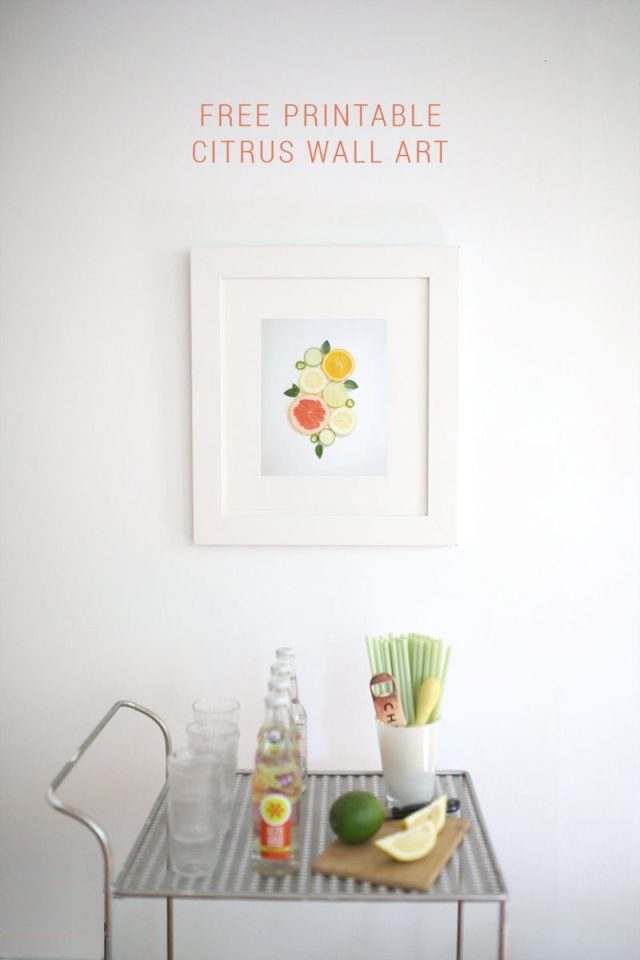 Free Printable Citrus Wall Art Photograph Download by Shrimp Salad Circus