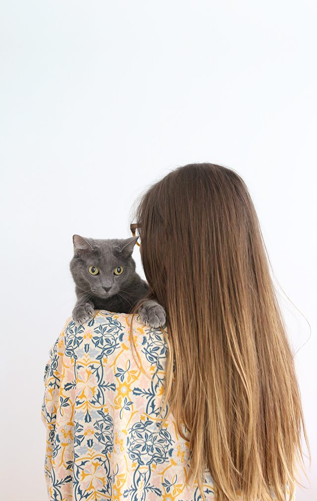 How to Keep Your Cat Healthy and Happy 4