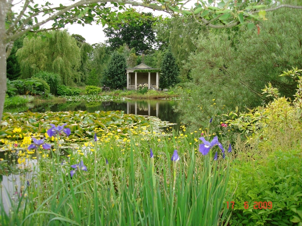 Plants Pond Surrounds