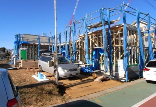 防蟻処理が施された土台と柱