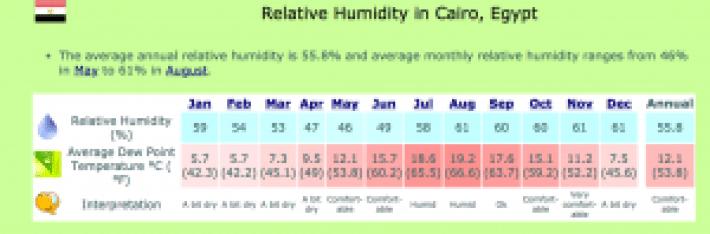 埃及的相對濕度。資料來源