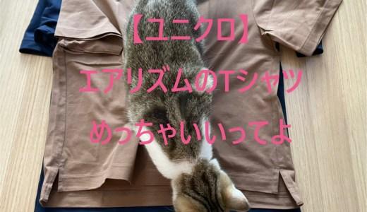 【ユニクロ】サイズ比較|アリズムコットンTシャツ