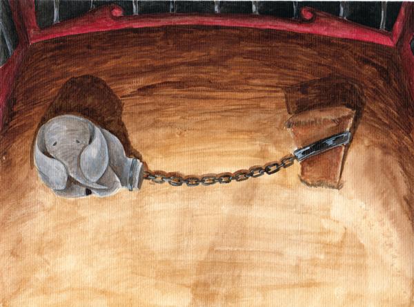 Elefantito encadenado