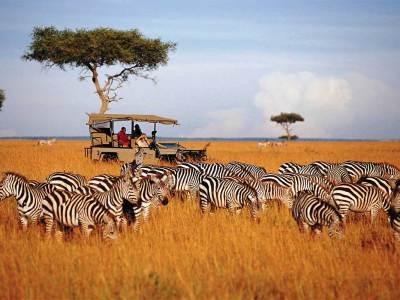 Nairobi Package Trip 2