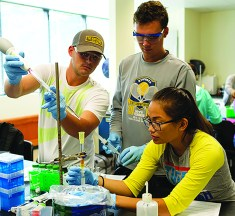 New 3+3 Program Offered for Pre-Pharmacy Students