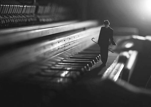 fiddle-oak-photography-15