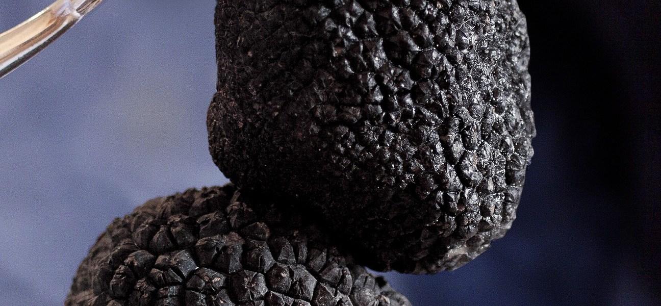 lanýž černý