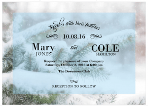 A Wedding Invitation With Snow Covered Pine Trees