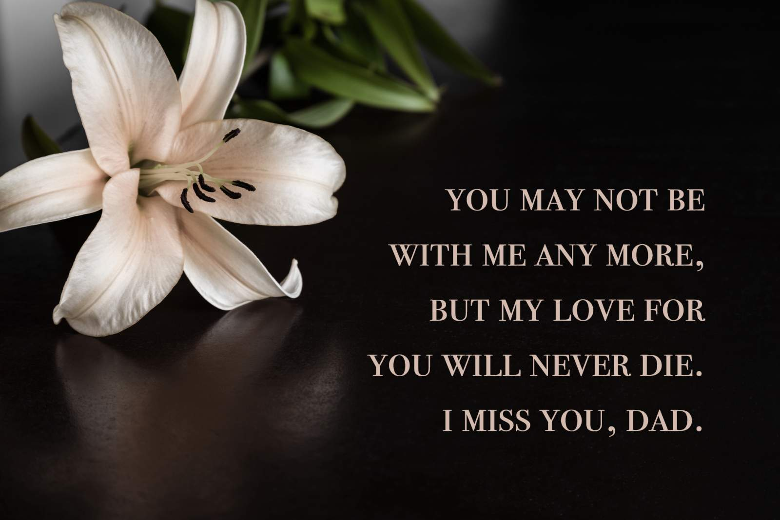 40 Miss You Dad Quotes Poems And Messages