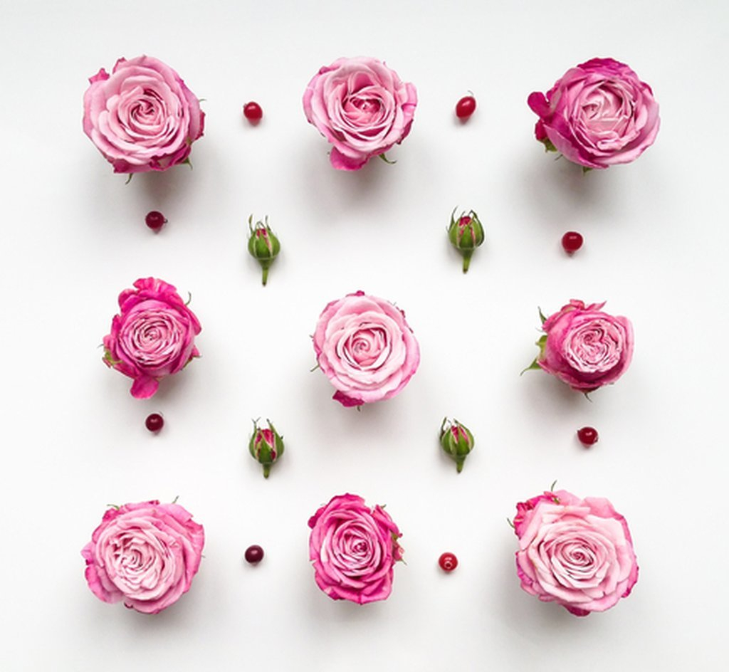 Decorative Pink Roses