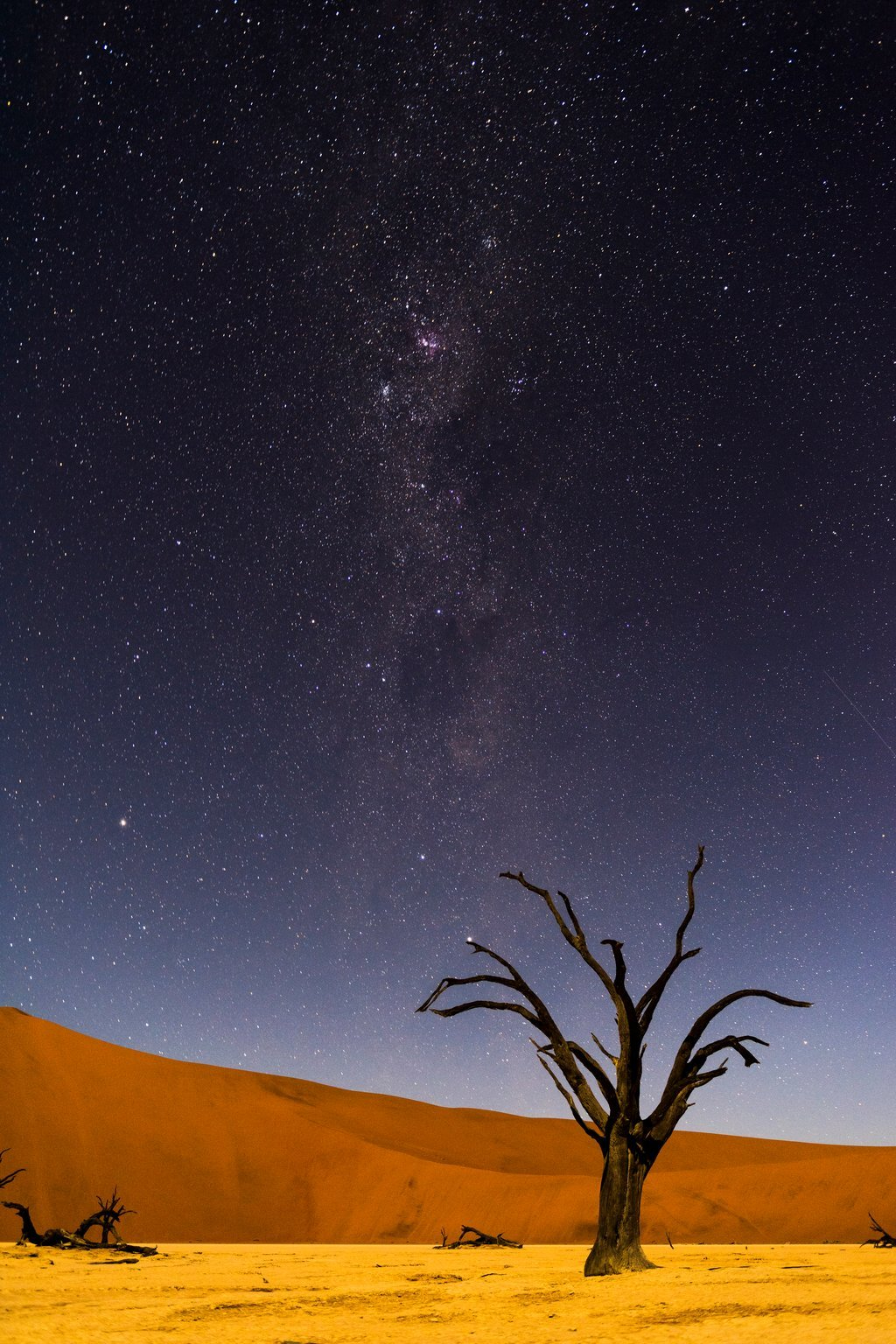 The Milky Way (Southern Africa)