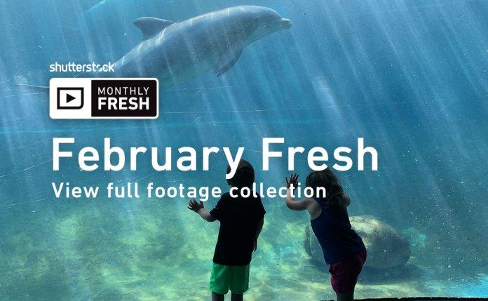 February Fresh Shutterstock Footage