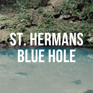 Picnic and Swimming at St Herman's Blue Hole National Park