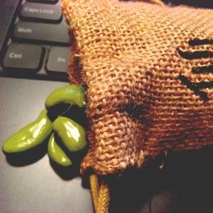 Dragon Ball Z Senzu Beans Bag