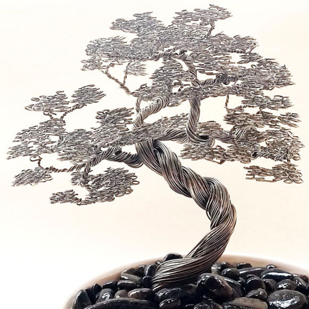 How To Wire Bonsai Tree Make Leaves Wiring Seedlings Trees Shut Up And Take My Yen