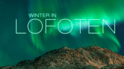 Winter in Lofoten Timelapse