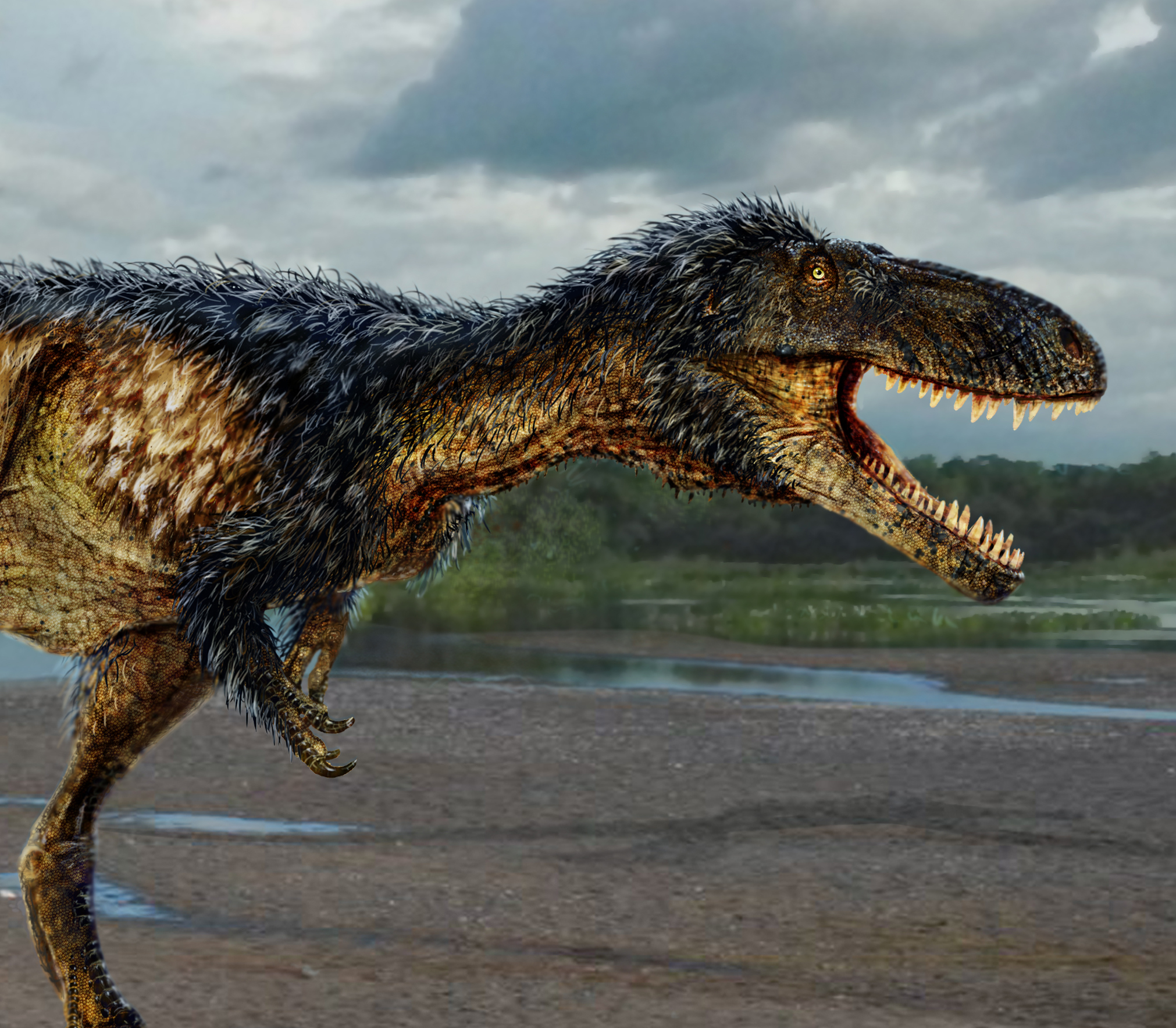 Newly Discovered Dinosaur Reveals How T Rex Became King