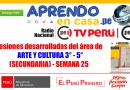 Sesiones desarrolladas del área de  ARTE Y CULTURA 3° – 5°(SECUNDARIA) – SEMANA 25