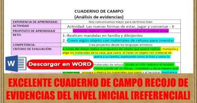 EXCELENTE CUADERNO DE CAMPO RECOJO DE  EVIDENCIAS DEL NIVEL INICIAL [REFERENCIAL]