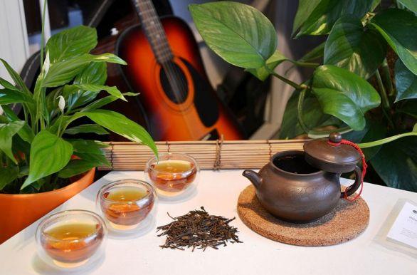 Stylish preparation of Hojicha Kiniro