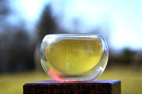 Bancha Haru Japanese Spring Bancha Tea in my garden