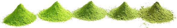 Japanese Matcha and Green tea powder