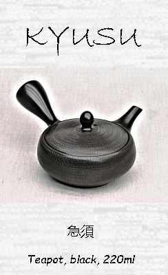 Japanese Teapot, black, 220ml, clay, handmade