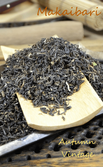 Autumn Flush from Makaibari Tea Estate, Darjeeling, India