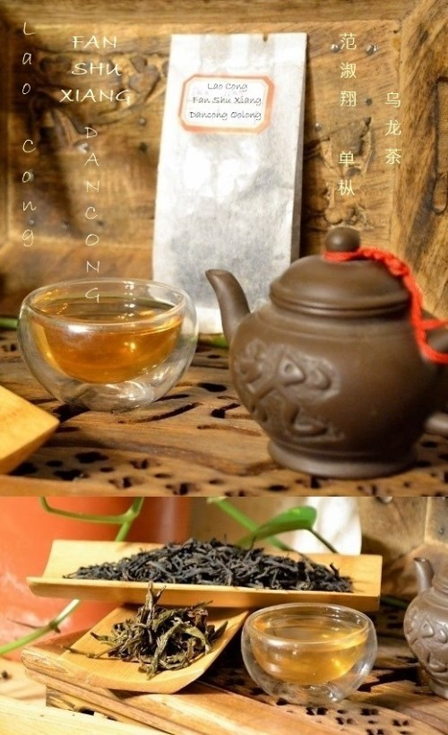 Lao Cong Fan Shu Xiang Dancong Oolong Tea from Xia Hu Mountain, Fenghuangshan, Chaozhou, Guangdong, China
