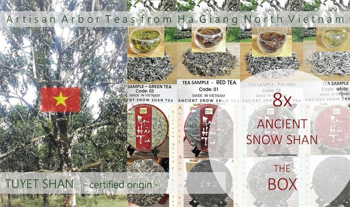 Ancient Snow Shan Box : 8 x Tuyet Shan / Ancient Snow Shan Tea, artisan arbor tea from Ha Giang, north Vietnam