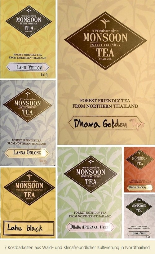 """""""7 Treasures"""" - Forest-Friendly Tea from Northern Thailand"""